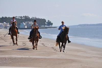 haig-equestrian
